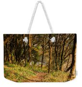 Sunlit Woods In Late Autumn Weekender Tote Bag