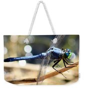 Sunning Blue Dragonfly Square Weekender Tote Bag