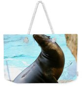 Sunning Sea Lion Weekender Tote Bag