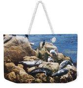 Sunning Seals Weekender Tote Bag