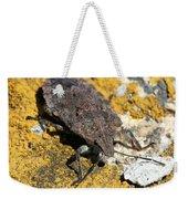 Sunning Stinkbug Weekender Tote Bag