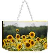 Sunny Days 8466 Weekender Tote Bag