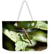Sunny Dragonfly Weekender Tote Bag