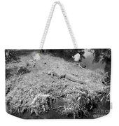 Sunny Gator Black And White Weekender Tote Bag