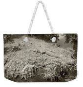 Sunny Gator Sepia  Weekender Tote Bag