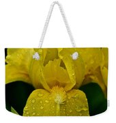 Sunny Rain Weekender Tote Bag