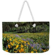 Sunny Spring Day Weekender Tote Bag