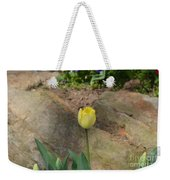 Sunny Yellow Tulips Series  Picture B Weekender Tote Bag