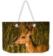 Sunset Buck Weekender Tote Bag