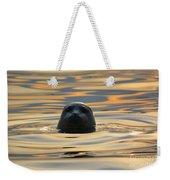 Sunset Seal Weekender Tote Bag
