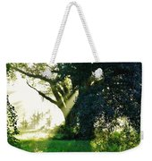 Sunshine And Sunbeams Weekender Tote Bag