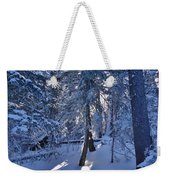 Sunshine Through Winter Trees Weekender Tote Bag