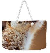 Suricata Weekender Tote Bag