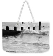 Surprised Seagulls Weekender Tote Bag