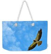Swainson's Hawk Snake River Birds Of Prey Natural Conservation Area Weekender Tote Bag