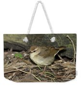 Swainsons Warbler Weekender Tote Bag