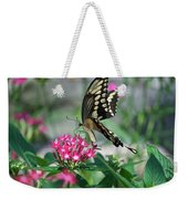 Swallowtail Butterfly 01 Weekender Tote Bag