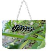 Swallowtail Caterpillar Weekender Tote Bag