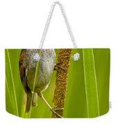 Swamp Sparrow Pictures Weekender Tote Bag