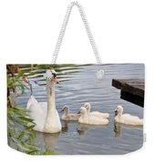 Swan And Chicks Weekender Tote Bag