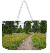 Swan Lake Trail In Grand Teton National Park-wyoming Weekender Tote Bag