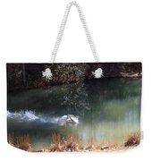 Swan Skid Weekender Tote Bag