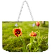 Swaying On A Breeze Weekender Tote Bag