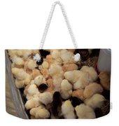 Sweet Baby Chicks For Sale Weekender Tote Bag