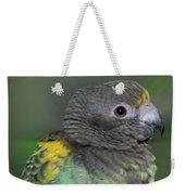 Sweet Baby Meyers Parrot Weekender Tote Bag