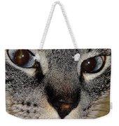 Cat - Sweet - Boy Weekender Tote Bag