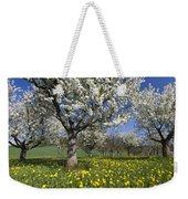 Sweet Cherry Orchard In Full Bloom Weekender Tote Bag