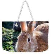 Sweet Little Bunny Weekender Tote Bag