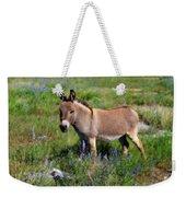 Sweet Miniature Donkey Weekender Tote Bag