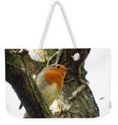 Sweet Robin Weekender Tote Bag