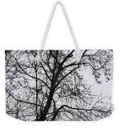 Sweetgum Silhouette On A Rainy Day Weekender Tote Bag