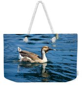 Swimming African Brown Goose Weekender Tote Bag