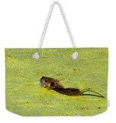 Swimming In Pea Soup - Baby Muskrat Weekender Tote Bag