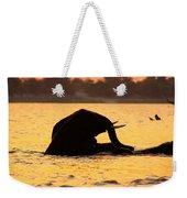 Swimming Kalahari Elephants Weekender Tote Bag