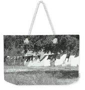Swinging Laundry Weekender Tote Bag