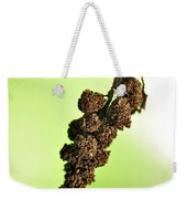 Swinging To And Fro... Weekender Tote Bag