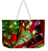 Swiss Chard Forest Weekender Tote Bag by Karen Wiles