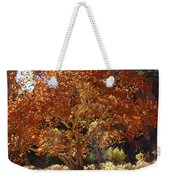 Sycamore Trees Fall Colors Weekender Tote Bag
