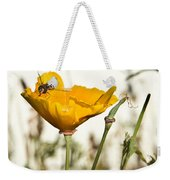 Syrphid Fly And Poppy 2 Weekender Tote Bag