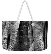 Ta Prohm Roots And Stone 04 Weekender Tote Bag