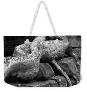 Ta Prohm Roots And Stone 06 Weekender Tote Bag