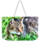 Tabby Cat Closeup Weekender Tote Bag