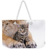 Tabby Kitten Between Large Dogs Paws Weekender Tote Bag