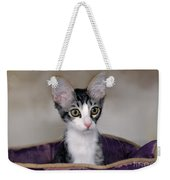 Tabby Kitten In A Purple Bed Weekender Tote Bag