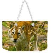 Tabby Tiger IIi Weekender Tote Bag