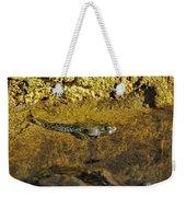 Tadpole Tail Weekender Tote Bag